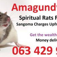 Spiritual rats spiritual traditional healer money spell casters Cape Town, Johannesburg 0634299958