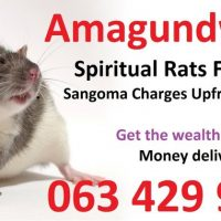 Spiritual rats spiritual traditonal healer money spell casters Cape Town, Johannesburg 0634299958