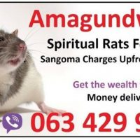 Spiritual rats spiritual traditonal healer money spell casters in Soweto | Johannesburg 0634299958